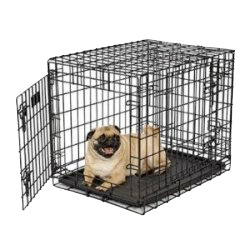 birdneck animal hospital veterinrian dog_training_crate.jpg